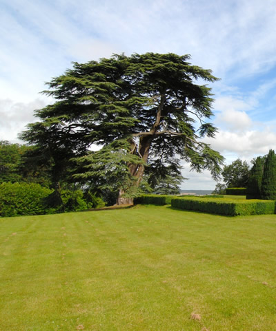 Hedsor house lawn care, bucks, taplow