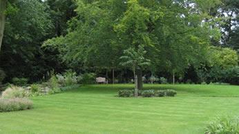 lawn care in buckinghamshire